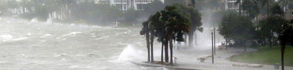 hurricane claims naples florida